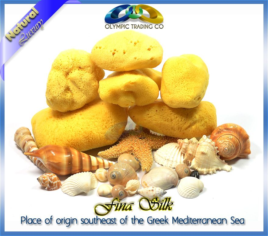 Wholesale Natural Silk Sea Sponges