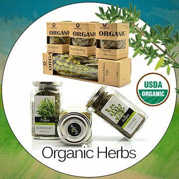 Organic_Herbs_square